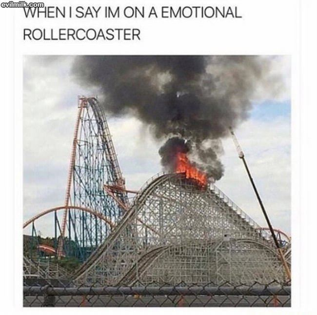 emotional rollercoaster One of the best places to see how we're handling our emotions -- or how they're handling us -- is in our most intimate relationships that's where our he.
