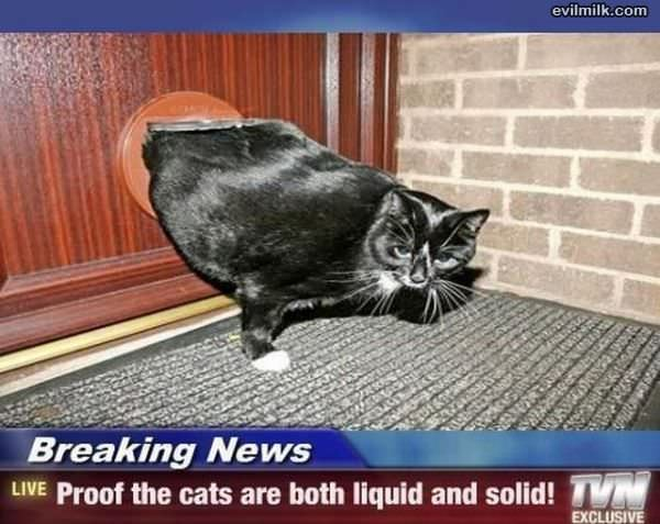 Breaking News