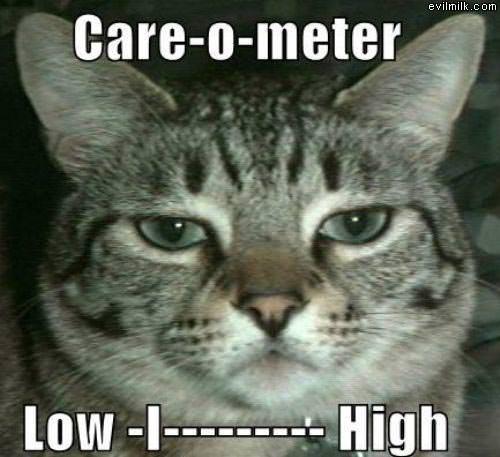 Care_O_Meter.jpg