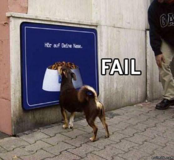 Fail_Dog331.jpg