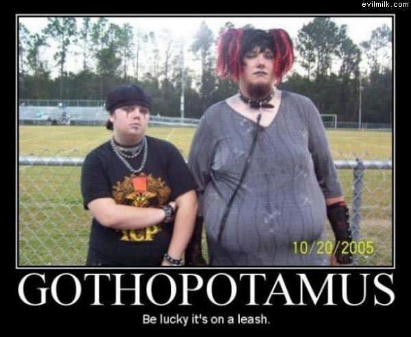 Gothopotamus.jpg