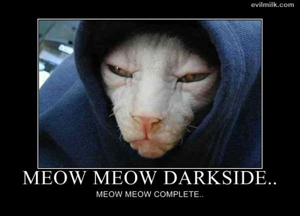 Funny shit Meow_Meow_Darkside