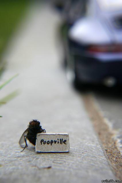 Poopville_Please.jpg