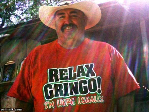 The Gringos - Gringo Guitar / Bandido