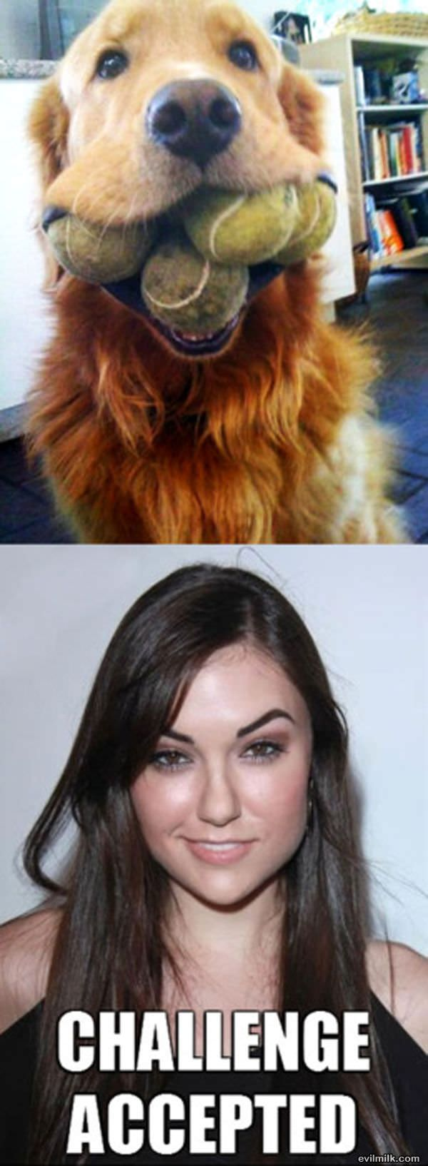 Sasha Grey Challenge Accepted