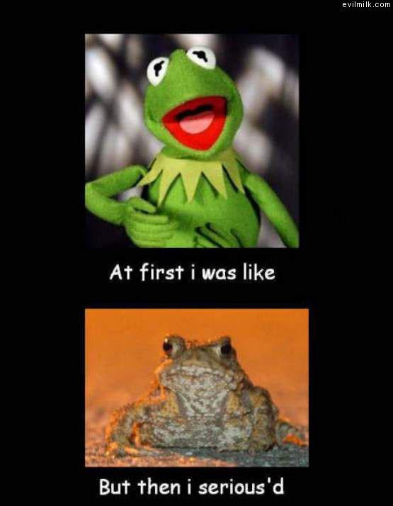 Serious_Kermit.jpg