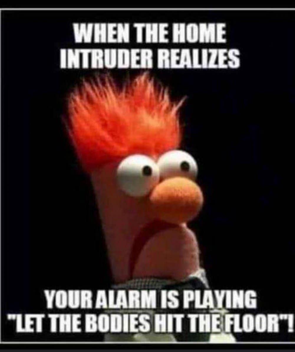 The_Intruder.jpg