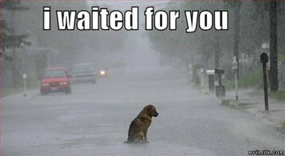 Waited_For_You.jpg