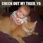 Check Out My Tiger