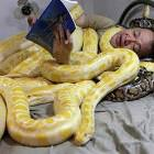 Just Reading A Story