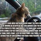 Road Rage Cat
